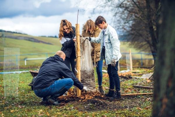 Na školách pribudlo viac ako 100 stromov starých odrôd