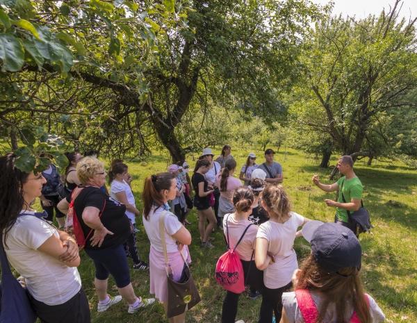 Vítame 11 nových škôl v projekte SadOVO